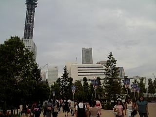 ランドマークタワーも見えます。